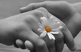 Vínculos de Amor Eterno