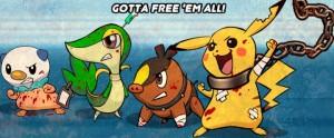 Pokemon Peta