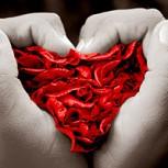 ¿Cómo demostrar el amor en San Valentín?: Algunas claves para lograrlo