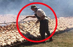 Uruguay organiza la parrillada de pollo más grande del mundo: 6 toneladas