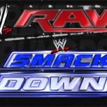 Vuelve la División de Marcas a la WWE