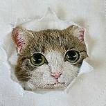 Madre japonesa borda populares gatos de internet en las camisas de su hijo