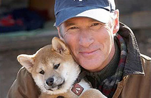 Publican inédita foto de Hachiko tomada hace 80 años: El perro que esperó a su amo por una década