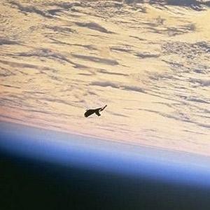 NASA Borra Imagen