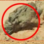 Creen haber encontrado cráneo alargado de un alien en Marte