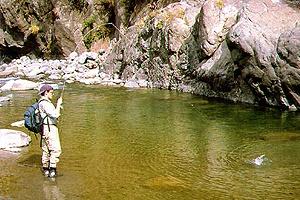 Pesca en ríos