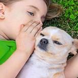 Amor por los animales: Los beneficios psicológicos de tener mascotas