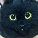 Carteras idénticas a un gato real: ¿Bonitas o terroríficas?