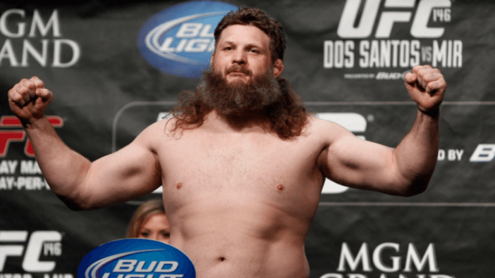 roy nelson 2