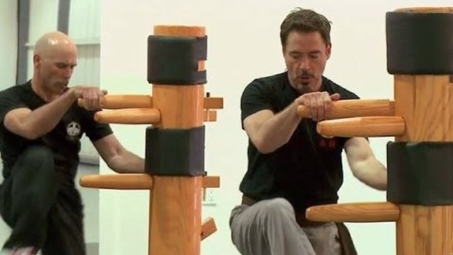 robert downey jr. wing chun