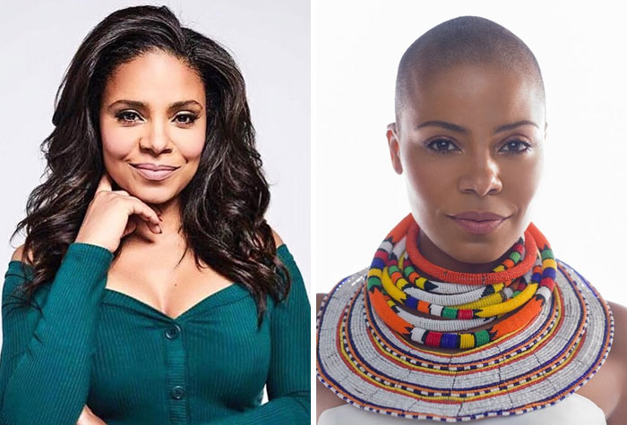Nappily Ever After sanaa lathan