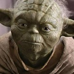 "Descubren un animal idéntico al maestro ""Yoda"" de Star Wars"