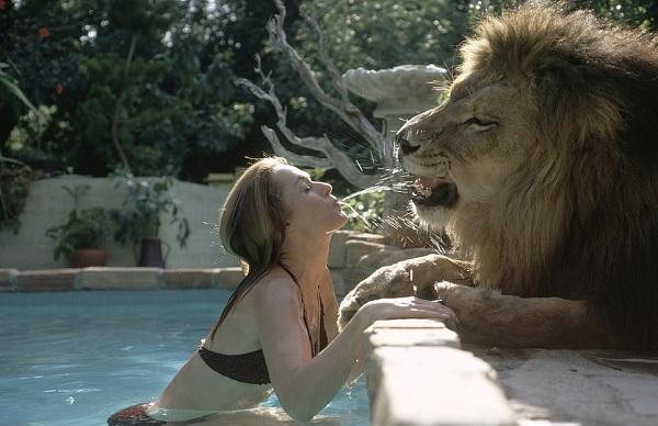 Tippi Hedren viviendo con leones