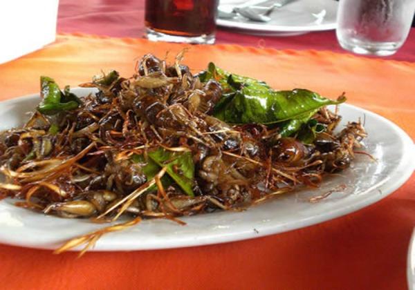 Crickets on a Stick, Brochette de grillos