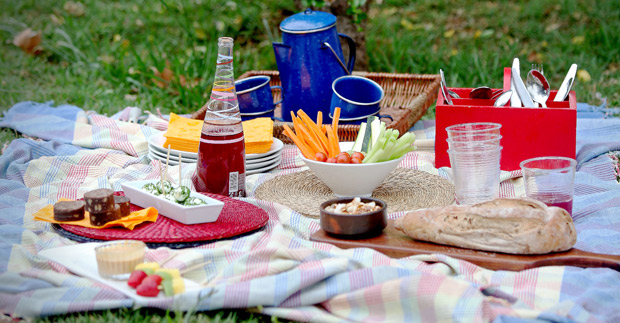 Cómo organizar un picnic? ideas y receta para disfrutar al aire ...