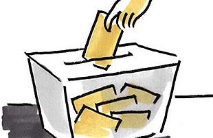 Elecciones Primarias 2013