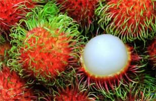 Las 10 frutas más raras del mundo