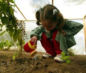 Jardiner a para ni os conexi n con la naturaleza for Viveros en penalolen