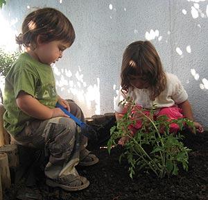 Jardiner a para ni os conexi n con la naturaleza for Herramientas jardineria ninos