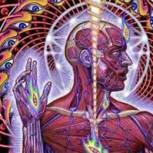 Las increíbles y psicodélicas propiedades del DMT: la molécula del alma