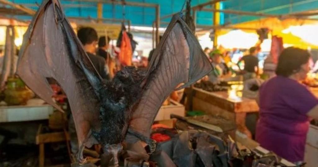 el-impactante-mercado-de-animales