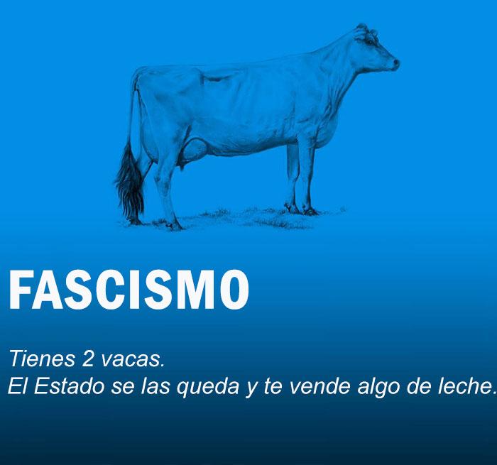 vacas13