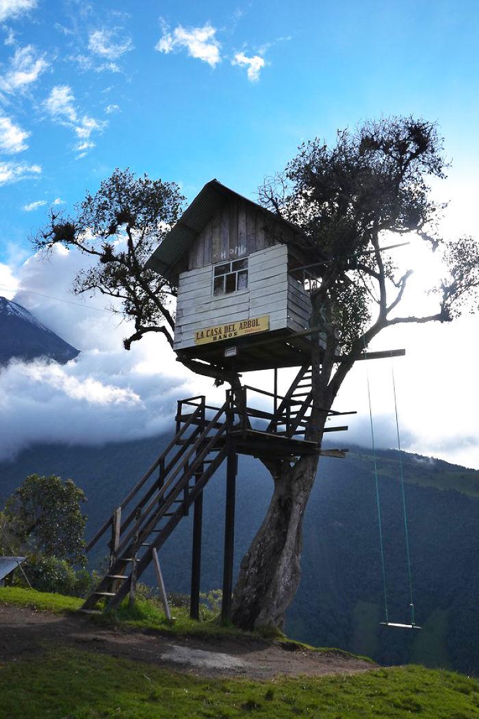 Fotos de las casas en el rbol ms preciosas del mundo Sueos de
