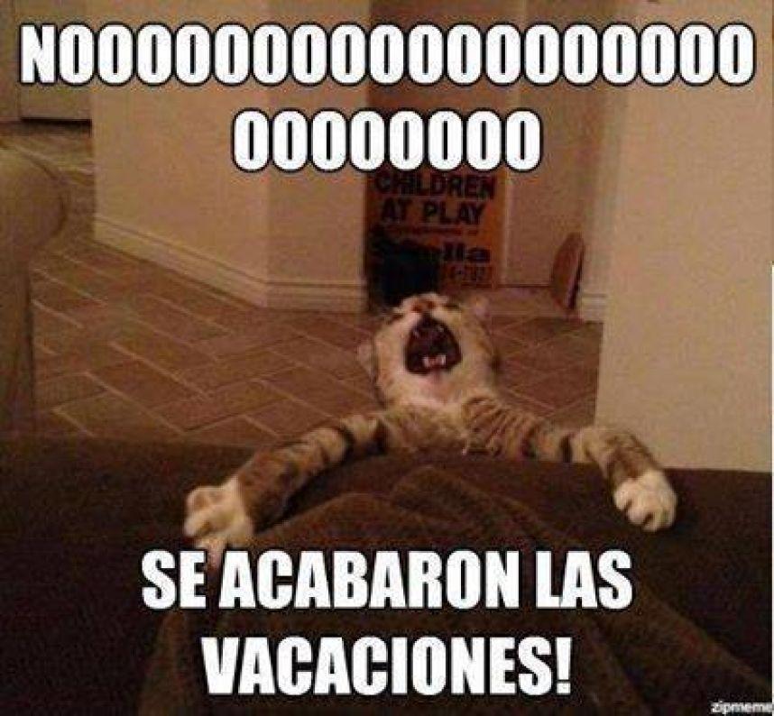fin-vacaciones-memes-2