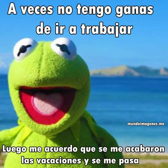 fin-vacaciones-memes-5