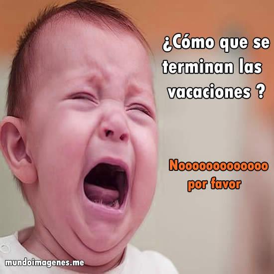 fin-vacaciones-memes-6