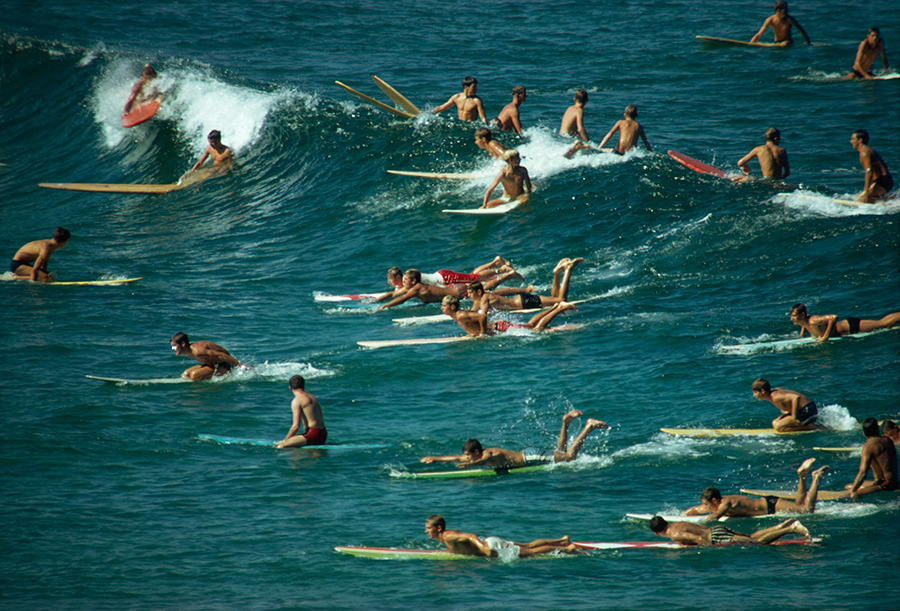 Surfers overpopulate