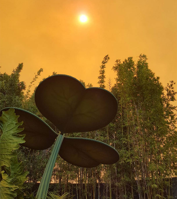 california-incendios-fotos7