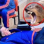 Los mejores memes futboleros del fin de semana: Van Gaal, los Oscars y más
