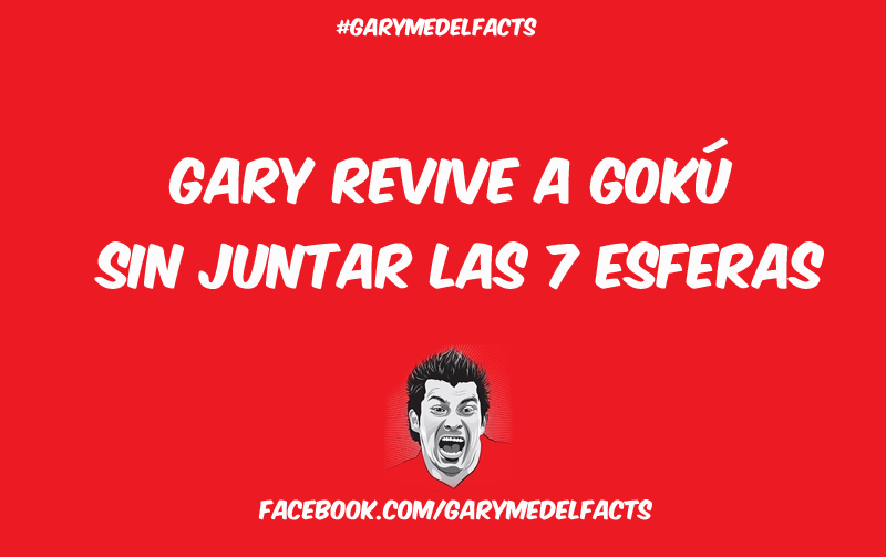 gary medel facts 11