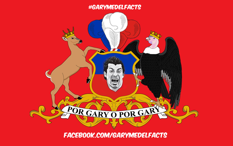 gary medel facts 12