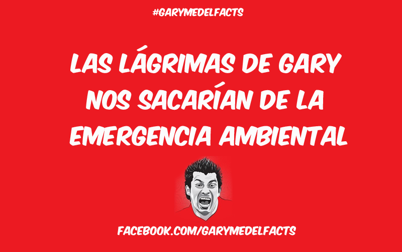 gary medel facts 13