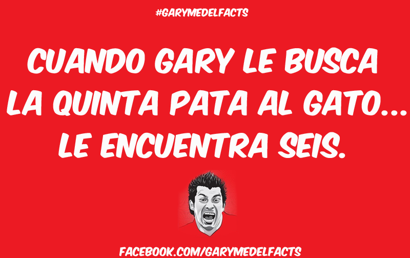 gary medel facts 18