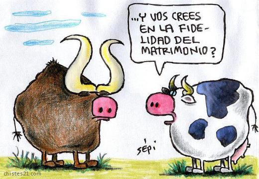 chiste-infieles 4
