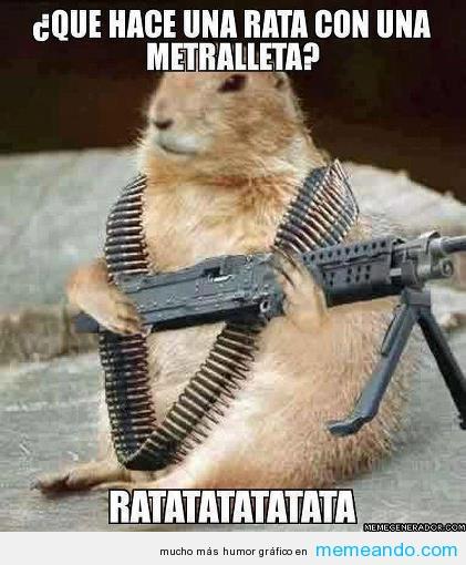 Resultado de imagen de memes graciosos de animales