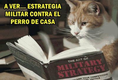 xestrategia-militar-574648498.jpg.pagespeed.ic.UZ_SfTtQhk