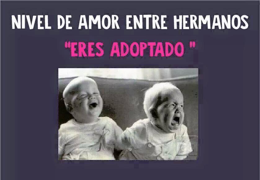 Los Graciosos Memes Que Recuerdan El Amor Y Odio Entre Hermanos Humor