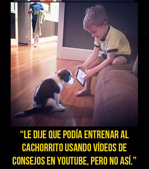 niños obedientes 2