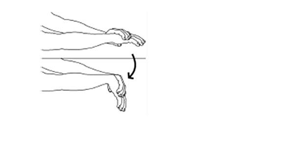 4 estiramientos básicos para prevenir tendinitis de muñeca ...