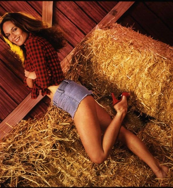 Daisy dukes and bisexual mmf   Hot fotos)
