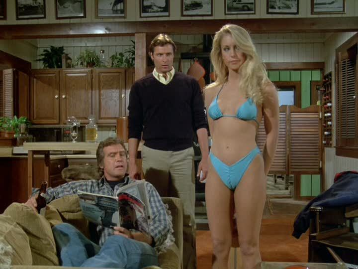 heather thomas -martin-campbell-reduced-to-directing-the-fall-guy1