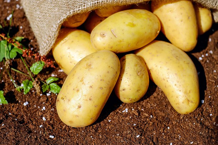 potatoes-1585075__480