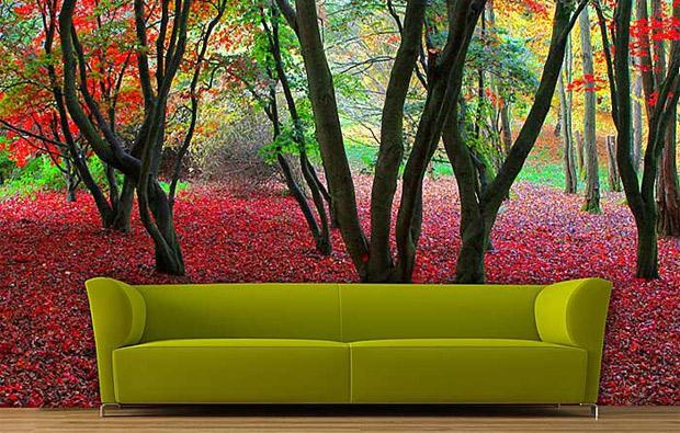 C mo decorar tu casa sin contaminar y muy f cil medio for Como decorar mi casa sin gastar