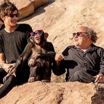 One Direction y video Steal My Girl: ¿Existe maltrato animal contra un chimpancé?