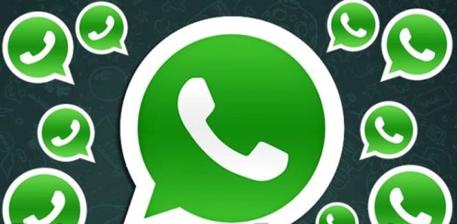 Grupo De Whatsapp La Inesperada Y Trascendental Evolución De Una