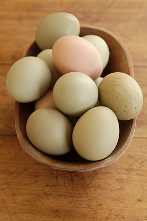 Día del huevo